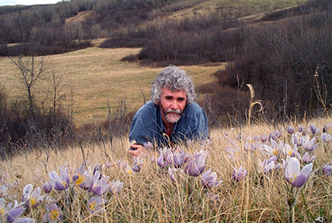 Norm Walker Among the Crocus Patch
